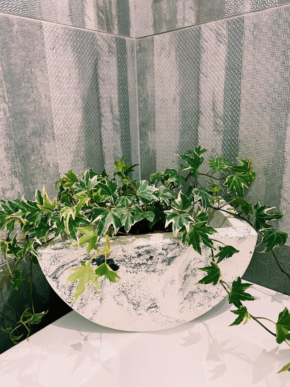 Vaso Biancospino di Concreto Home